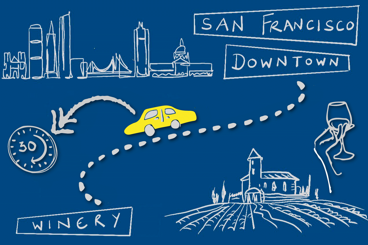Photo for: Wineries to check out near San Francisco for a day trip