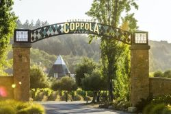 Photo for: 48 hours in Sonoma Valley