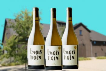 Photo for: Trois Noix is the best Chardonnay of the Year