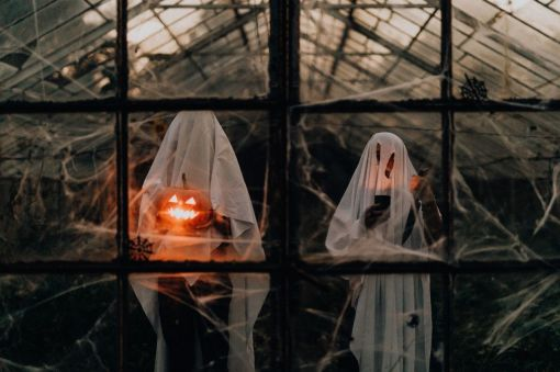 Photo for: What to do in San Francisco this Halloween