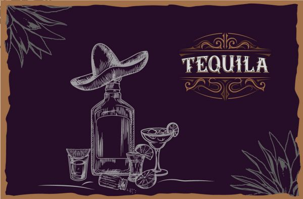 Photo for: We found the Best Tequilas in the World